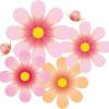 折り紙で秋の花(9月・10月・11月)の簡単な折り方・作り方!